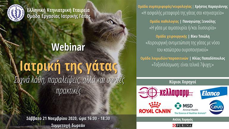 webinar, Η ιατρική της γάτας, συχνά λάθη, παραλείψεις, αλλά και σωστές πρακτικές